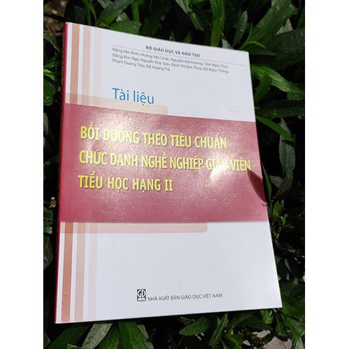 Tài Liệu - Bồi Dưỡng Theo Chuẩn Chức Danh Nghề Nghiệp Giáo Viên Tiểu Học Hạng II - Ảnh 5