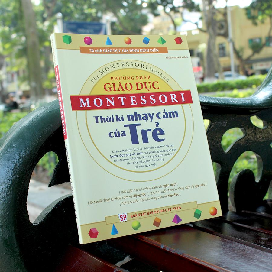 Phương Pháp Giáo Dục Montessori – Thời Kì Nhạy Cảm Của Trẻ - Ảnh 2